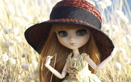 Doll Broad Brimmed Hat