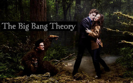 Big Bang Theory Picture