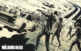 The Walking Dead Widescreen