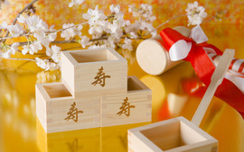 Traditional Japanese New Year Images