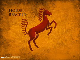 Game of Thrones House Bracken