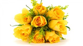 Yellow Roses Wallpapers