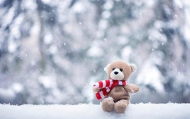 Winter Pic