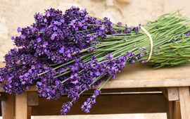 Lavender Flowers Wide Wallpaper