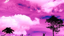Pink Color Desktop Backgrounds