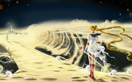 Sailor Moon Anime