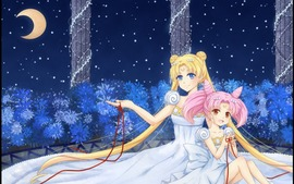 Sailor Moon Widescreen