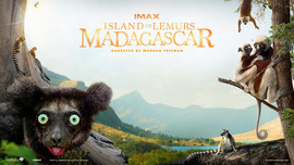 Island of Lemurs Madagascar (2014)