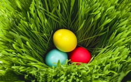 Easter 2014 Backgrounds