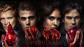 The Vampire Diaries TV Series 2014