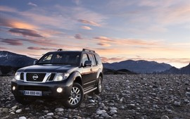 2011 Nissan Pathfinder And Navara