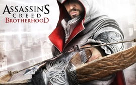Assassins Creed Brotherhood Game