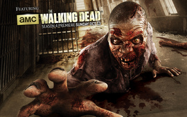 2013 The Walking Dead Season