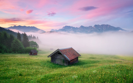 Alps Meadow Germany