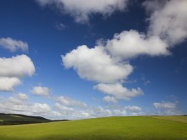 Blue Skies And Green Pastures