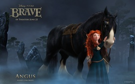 Merida Angus In Brave