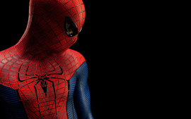 The Amazing Spider Man Wallpaper