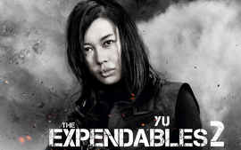 Yu Nan In The Expendables