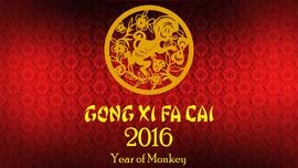 2016 Year of Monkey