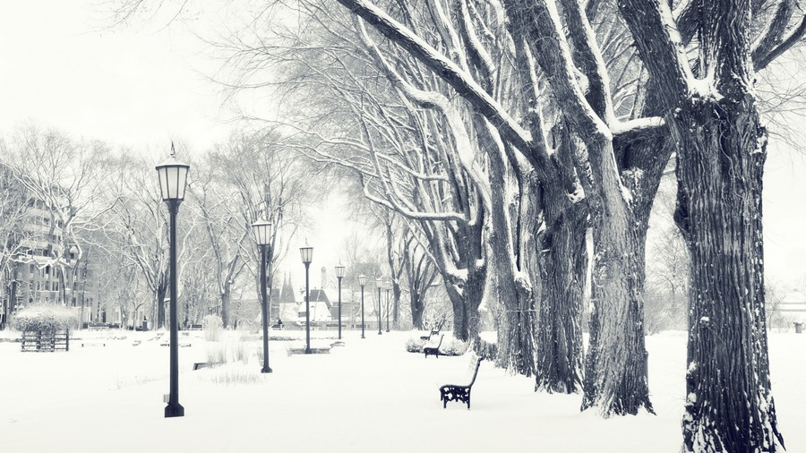 Winter Desktop Backgrounds