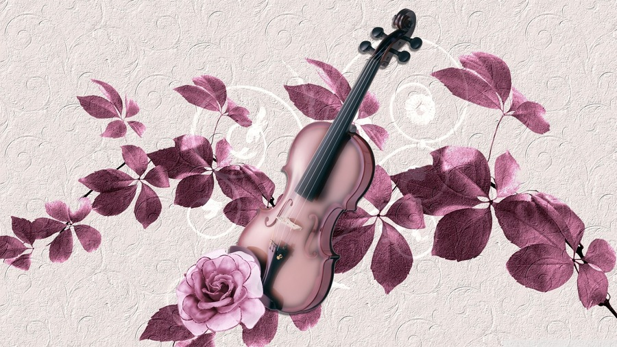 Violin HD Wallpapers