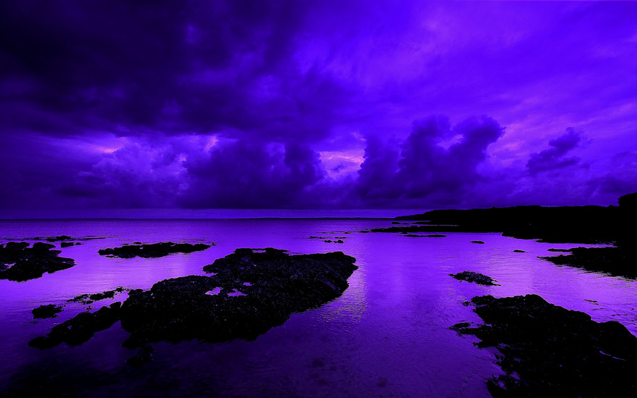 Violet Backgrounds - Wallpaper, High Definition, High Quality, Widescreen