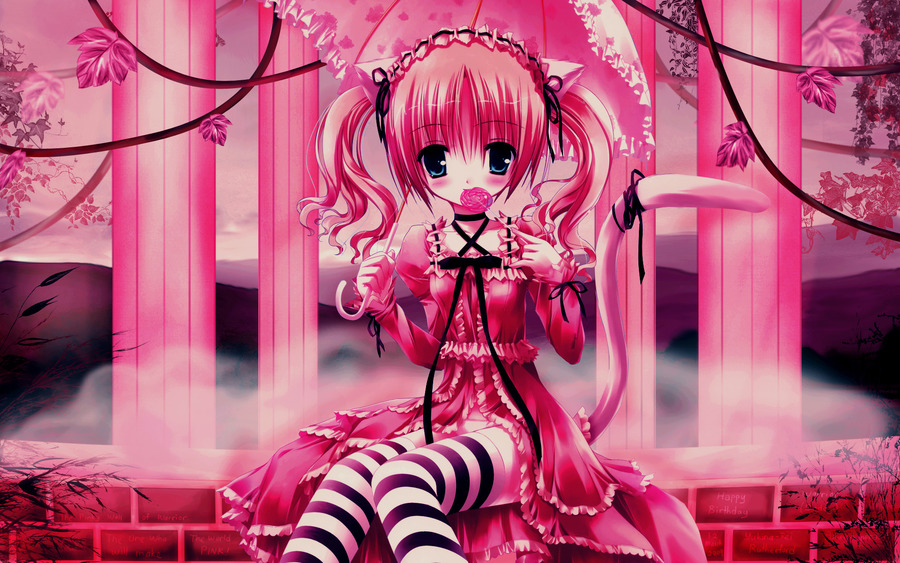 Pink Colour Wallpapers