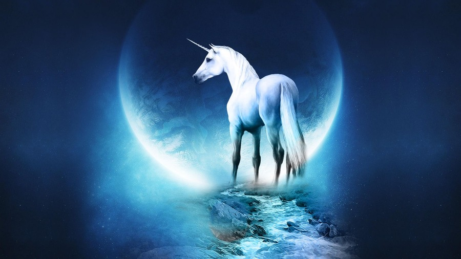 Unicorn Full HD