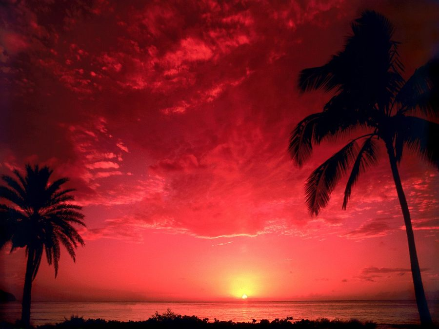 South Pacific Sunset