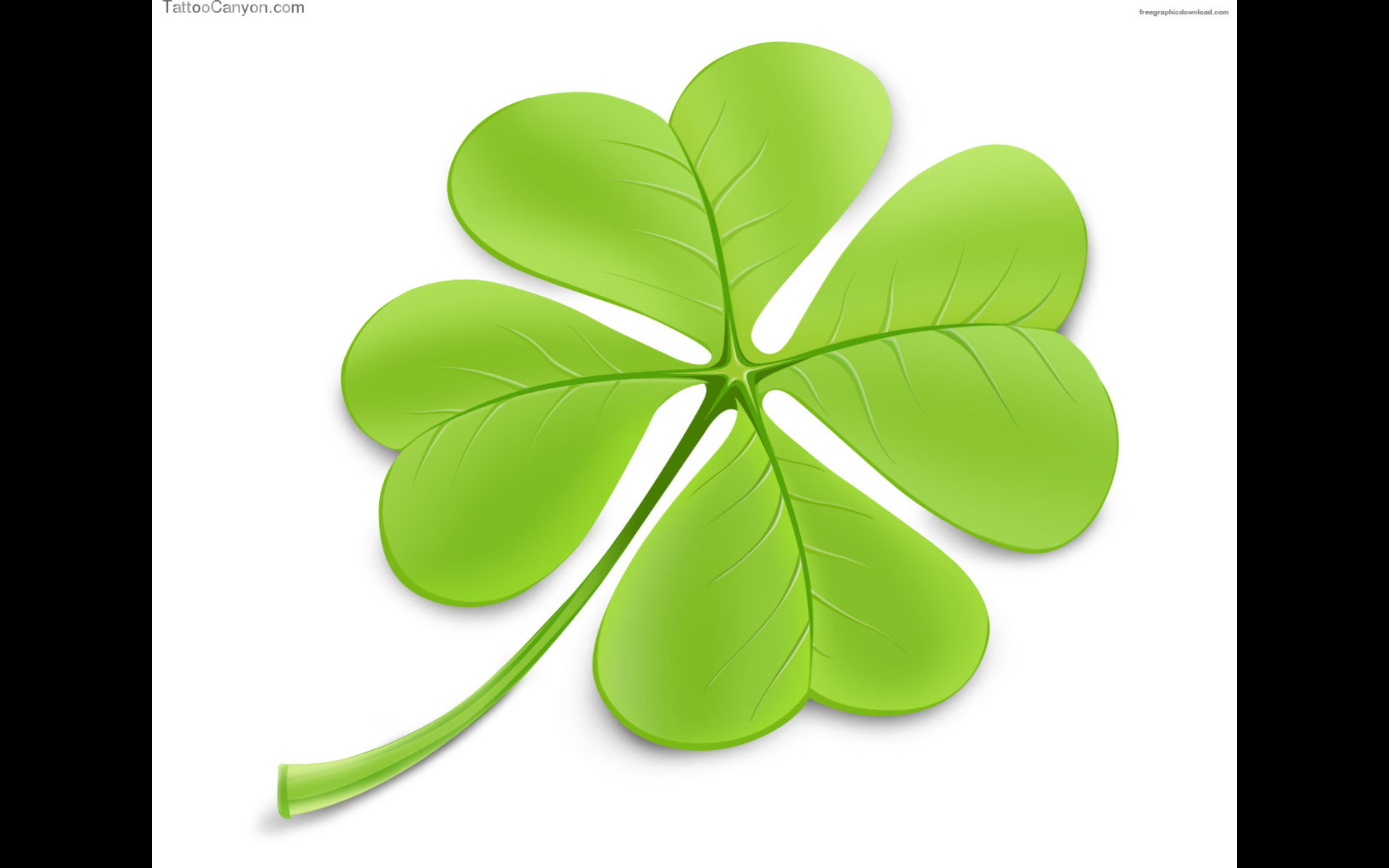 St Patrick S Day Clover Wallpaper High Definition High