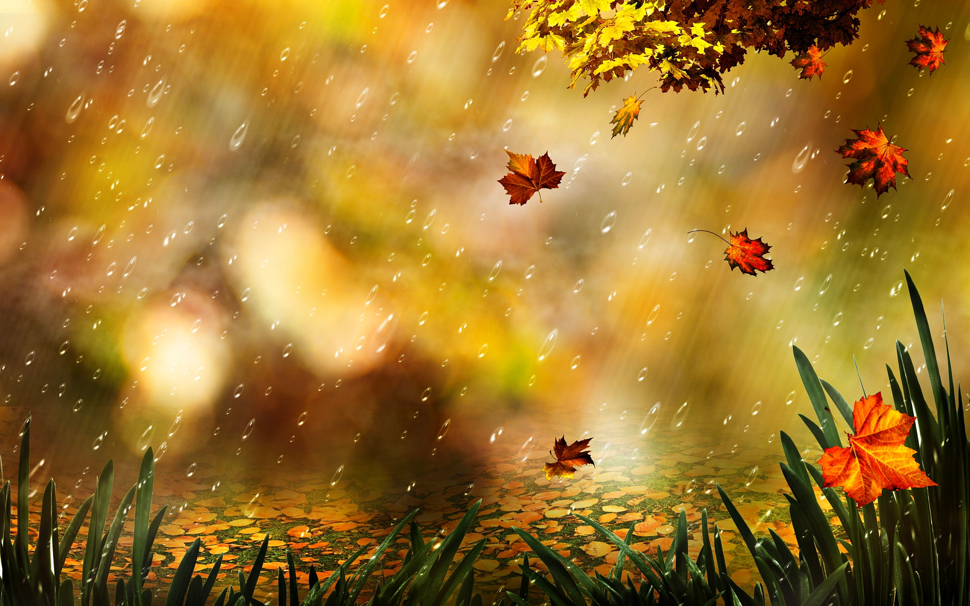 Autumn Leaf Artwork Wallpaper High Definition High