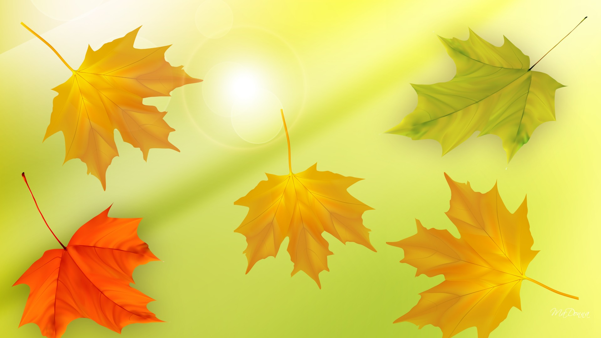 Maple Leaf Motors >> Maple Leaves Artwork - Wallpaper, High Definition, High Quality, Widescreen