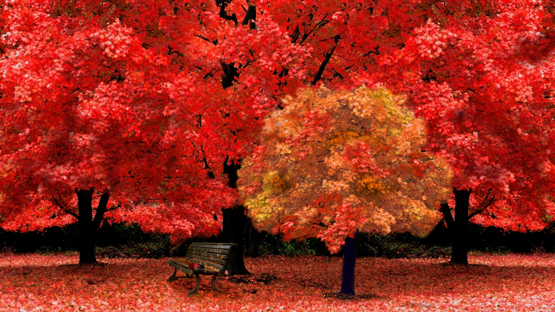 red fall wallpaper - photo #13