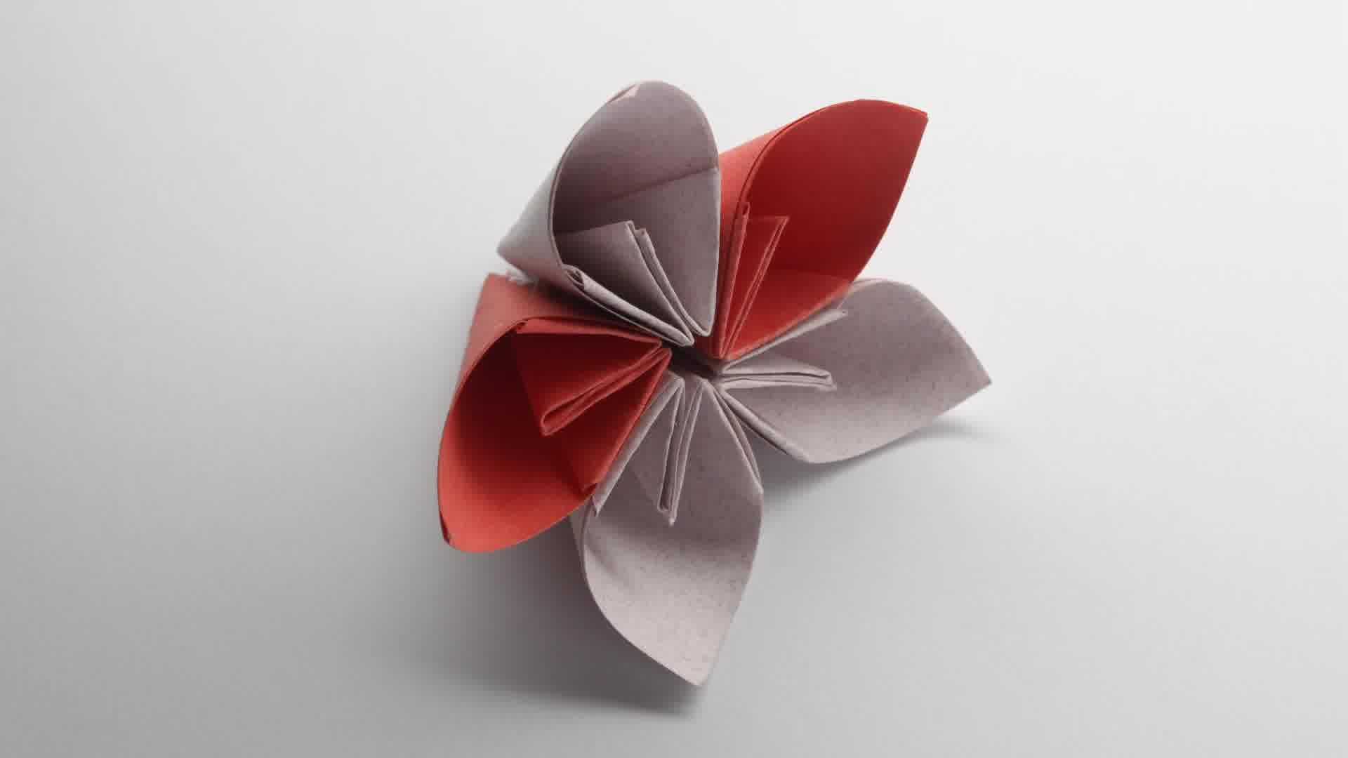 Easy Origami Flower Wallpaper High Definition High Quality Widescreen
