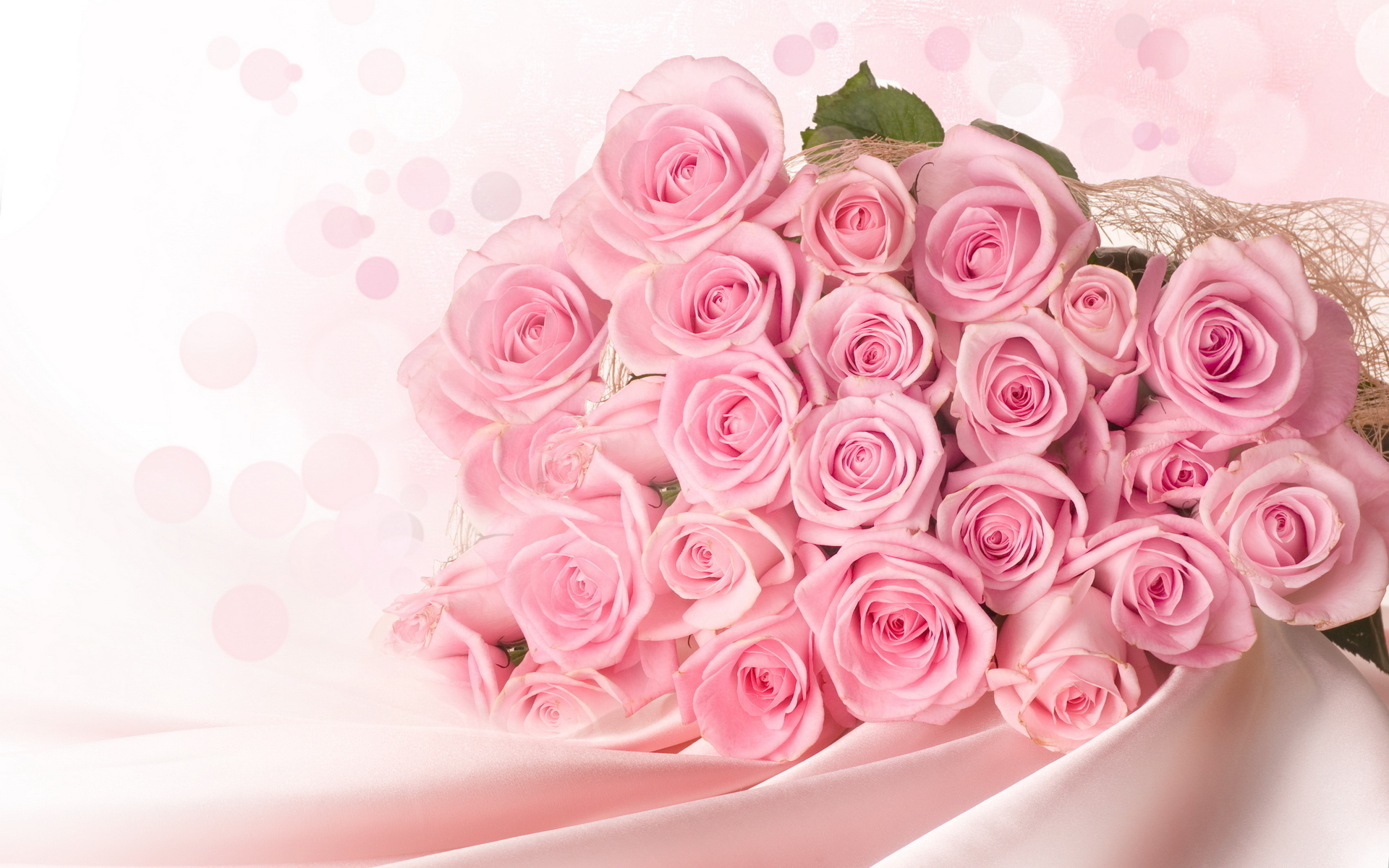 Pink Roses Background Wallpaper High Definition High Quality