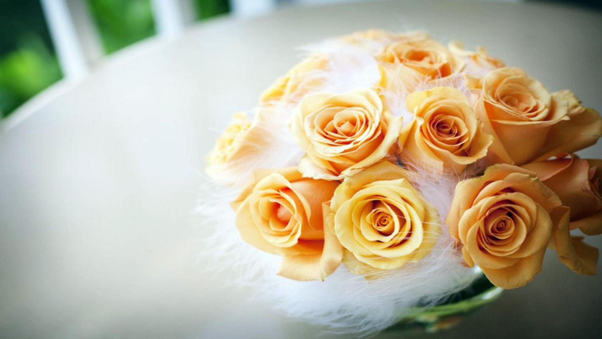 Yellow Roses 1080p Wallpaper High Definition High Quality