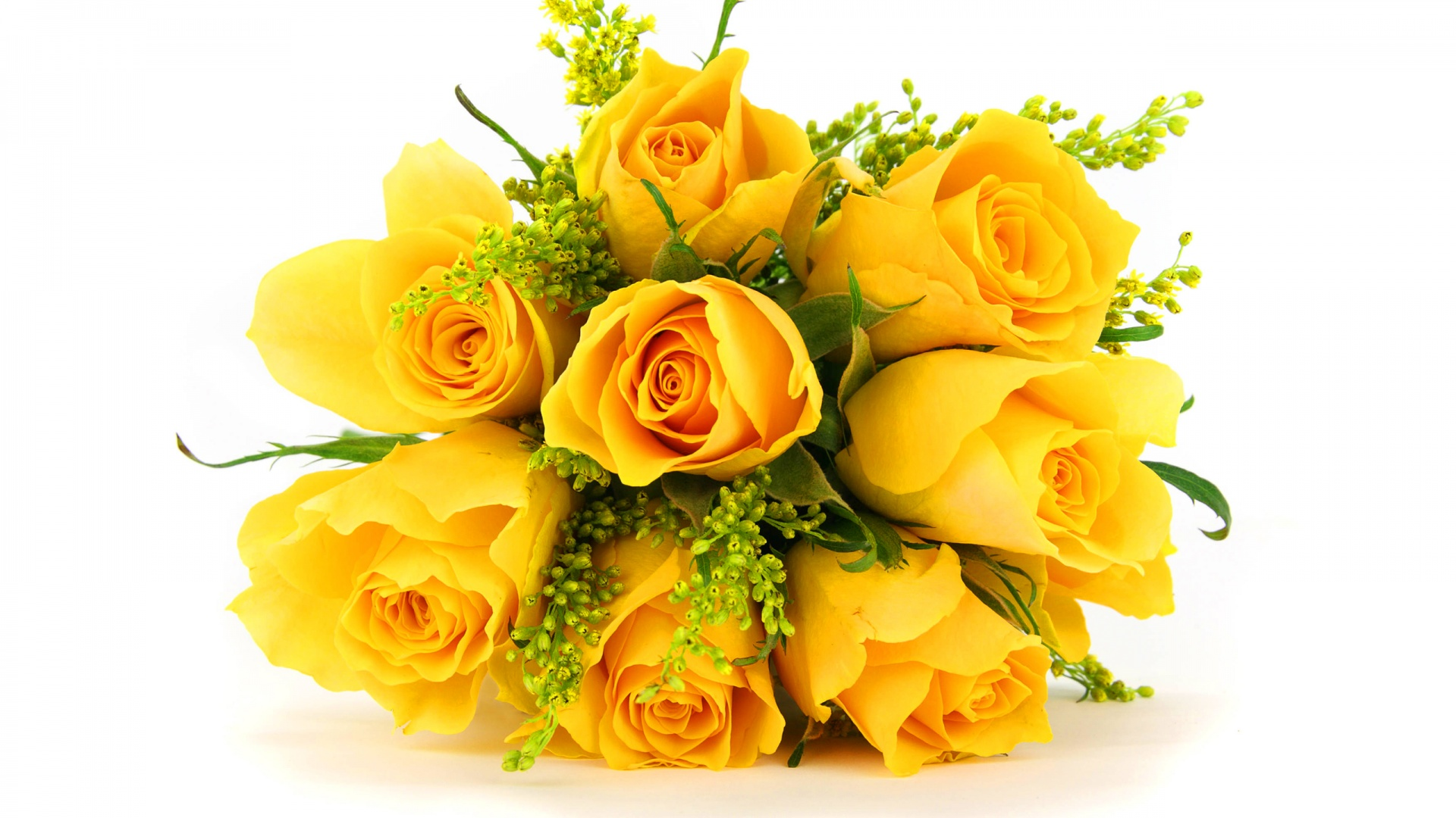 Yellow Roses Wallpapers Wallpaper High Definition High Quality