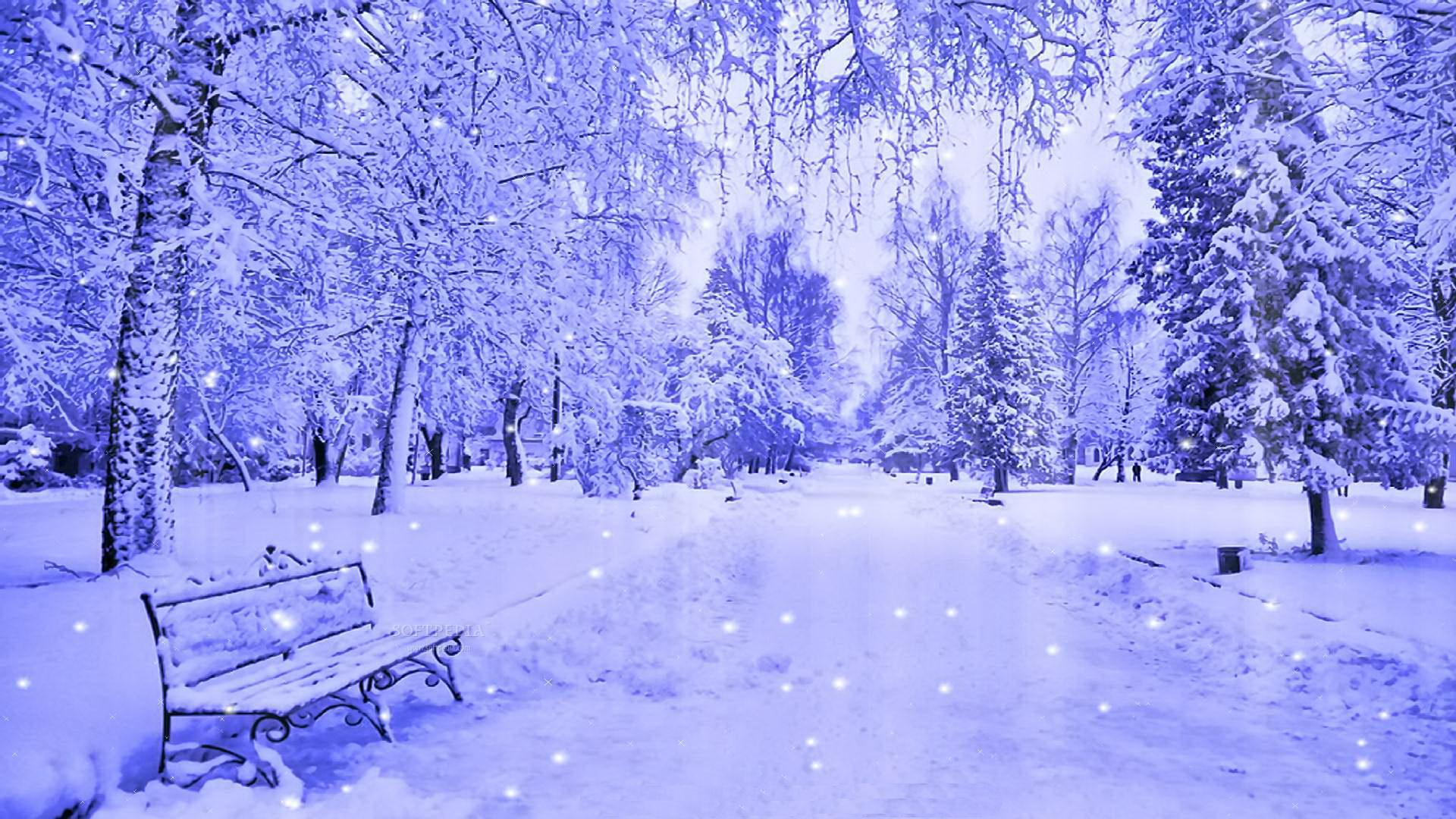 Snow Wallpapers Wallpaper High Definition High Quality Widescreen