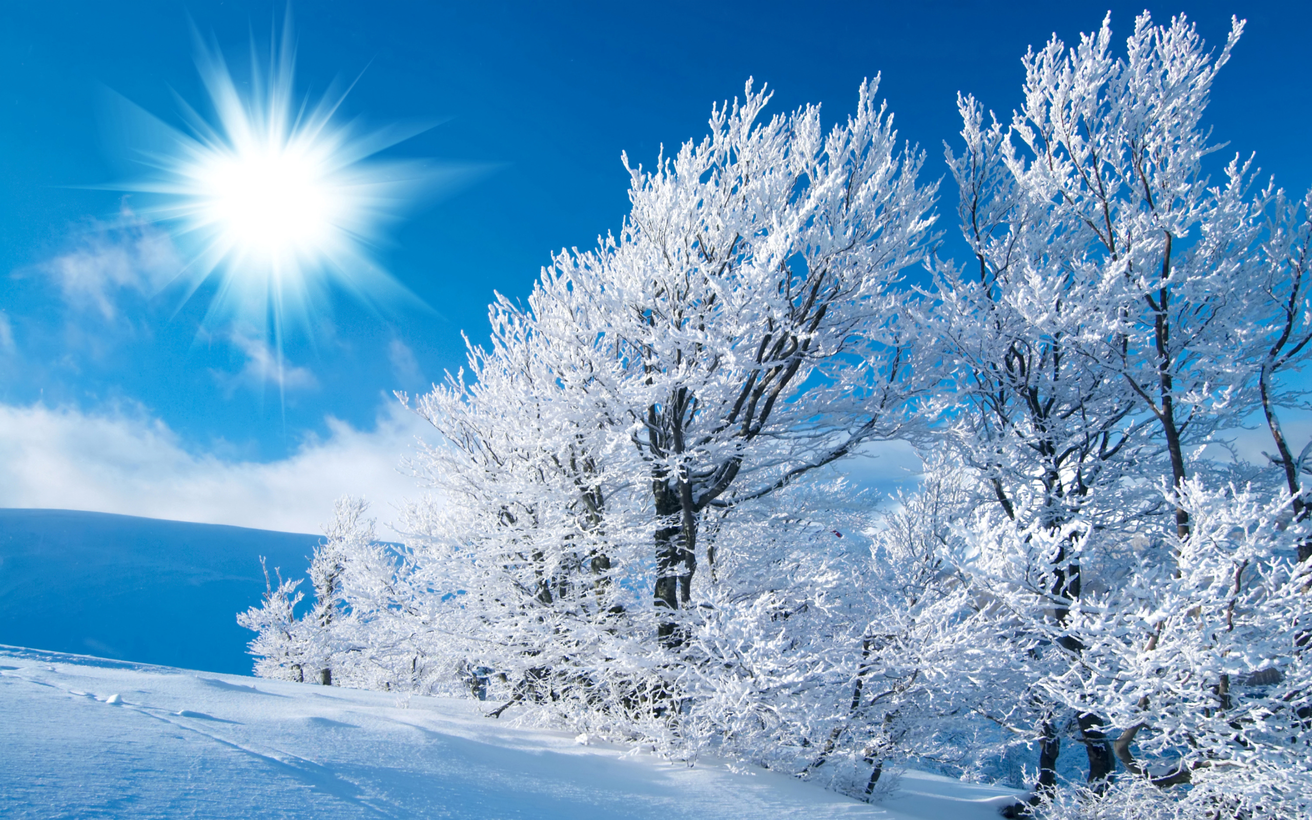 Winter Wallpaper High Definition Winter Sun Wallpaper High Definition High Quality Widescreen