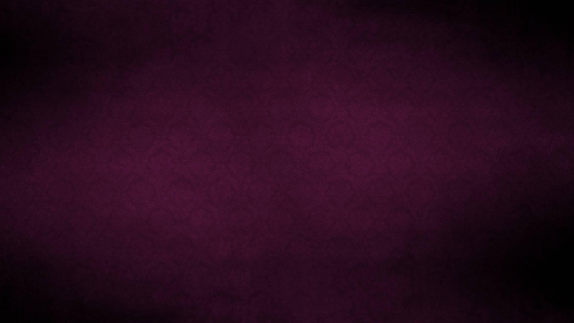 Violet Colour Wallpaper Wallpaper High Definition High Quality
