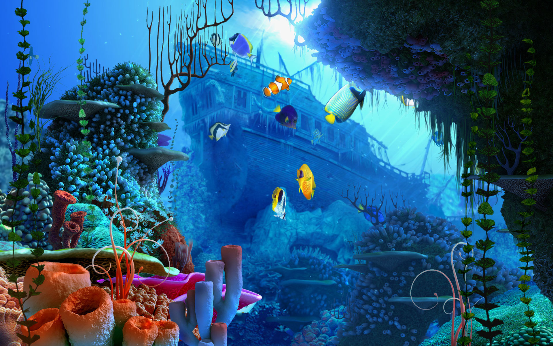 under the sea fish wallpapers - photo #13