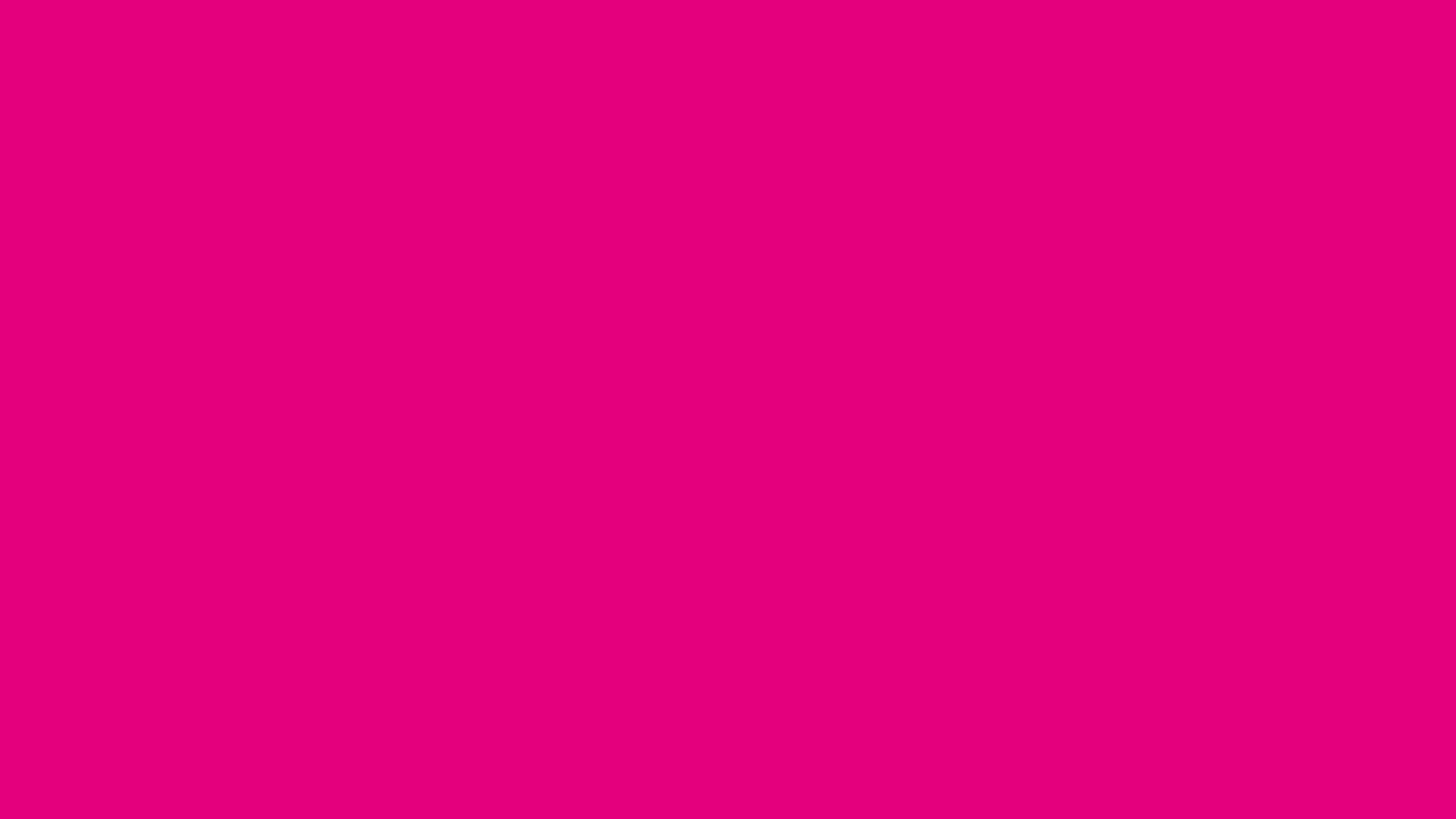 mexican pink - wallpaper, high definition, high quality, widescreen