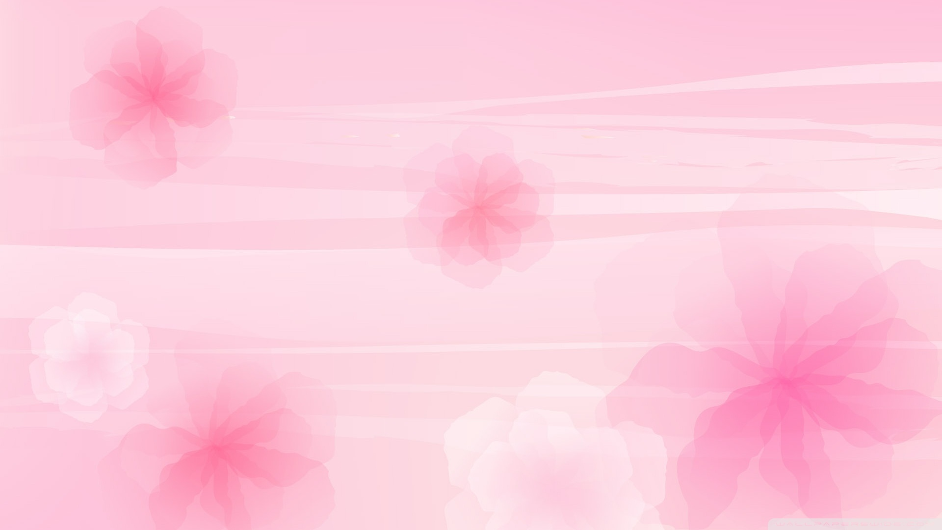 Pics Photos  Fondo Rosa Pink Background