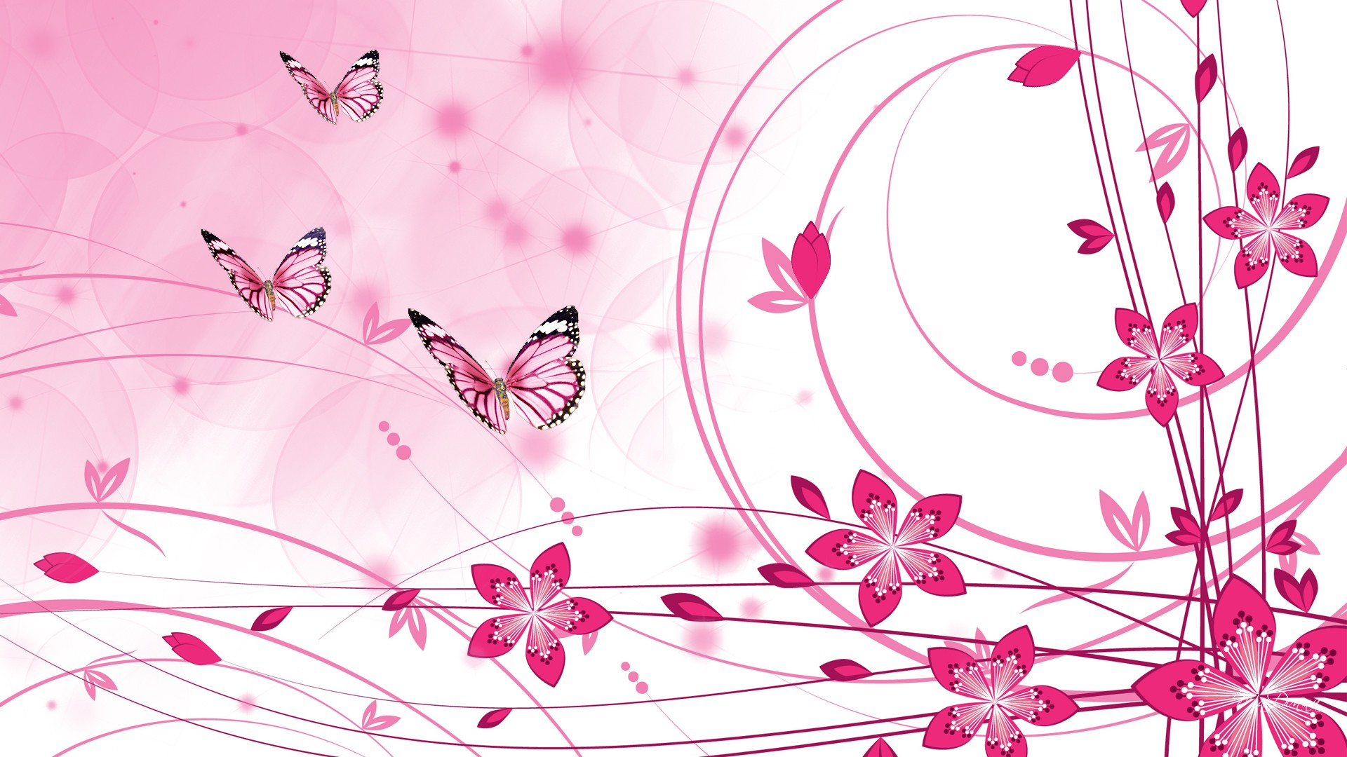 Pink Color HD Wallpapers - Wallpaper, High Definition, High Quality ...