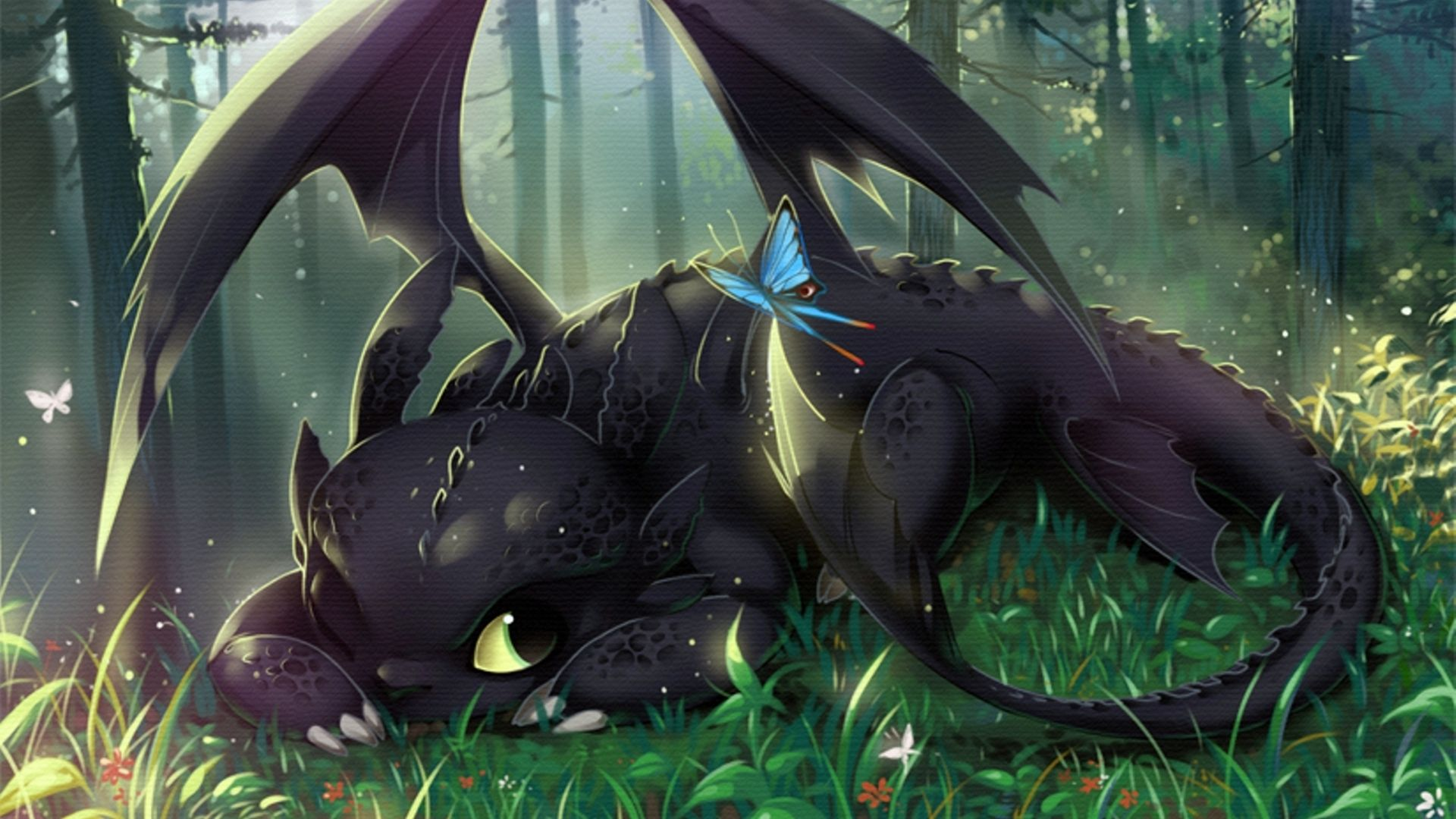 How To Train Your Dragon Wide Wallpaper High Definition