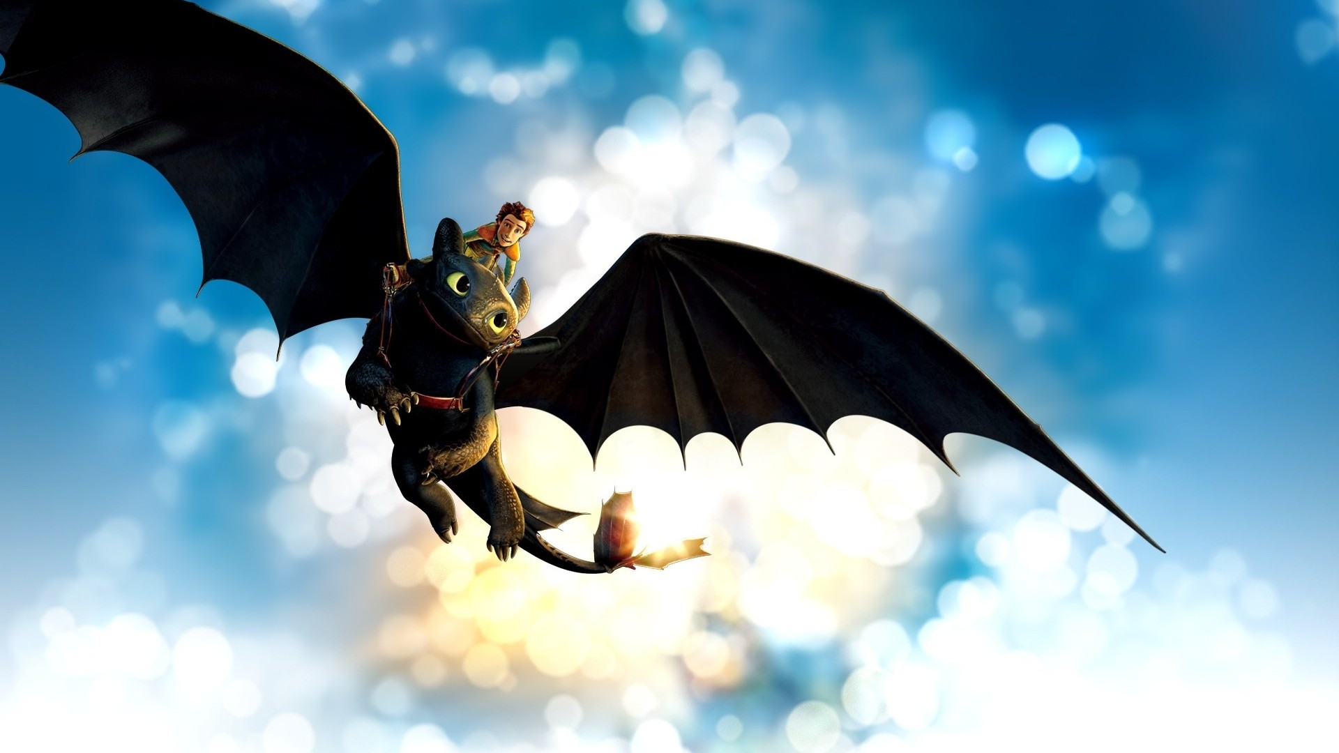 how to train your dragon essays