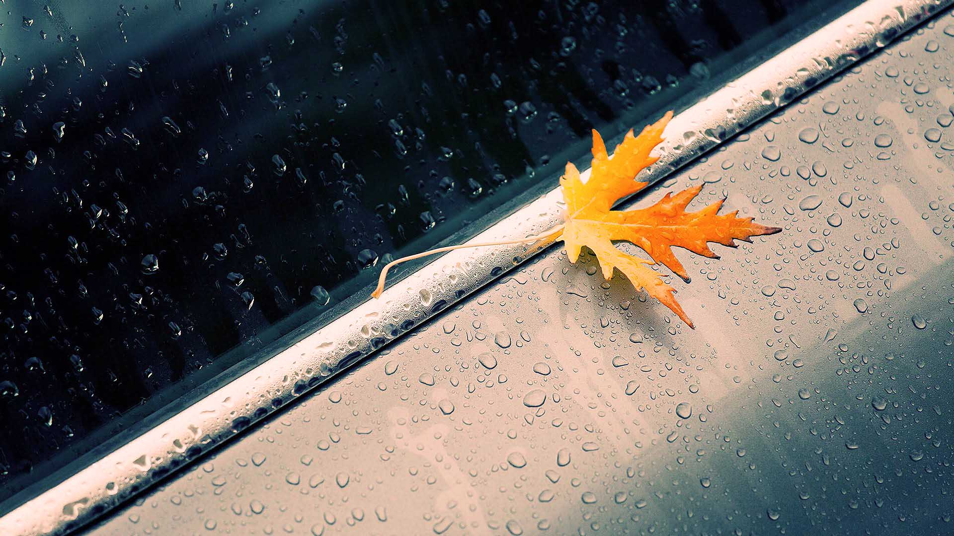 Rain Photos Wallpaper High Definition High Quality