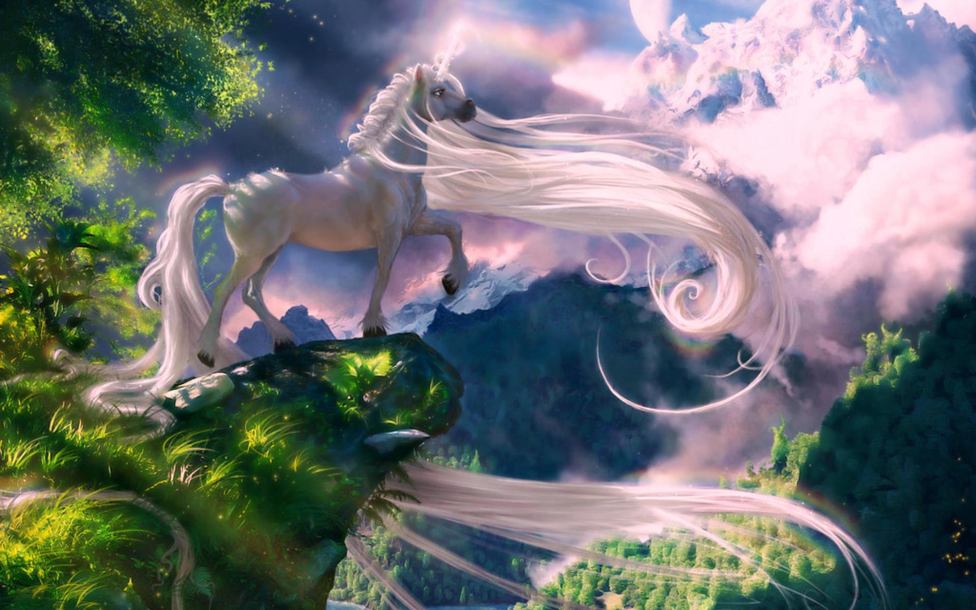 Beautiful Unicorn Wallpaper High Definition High