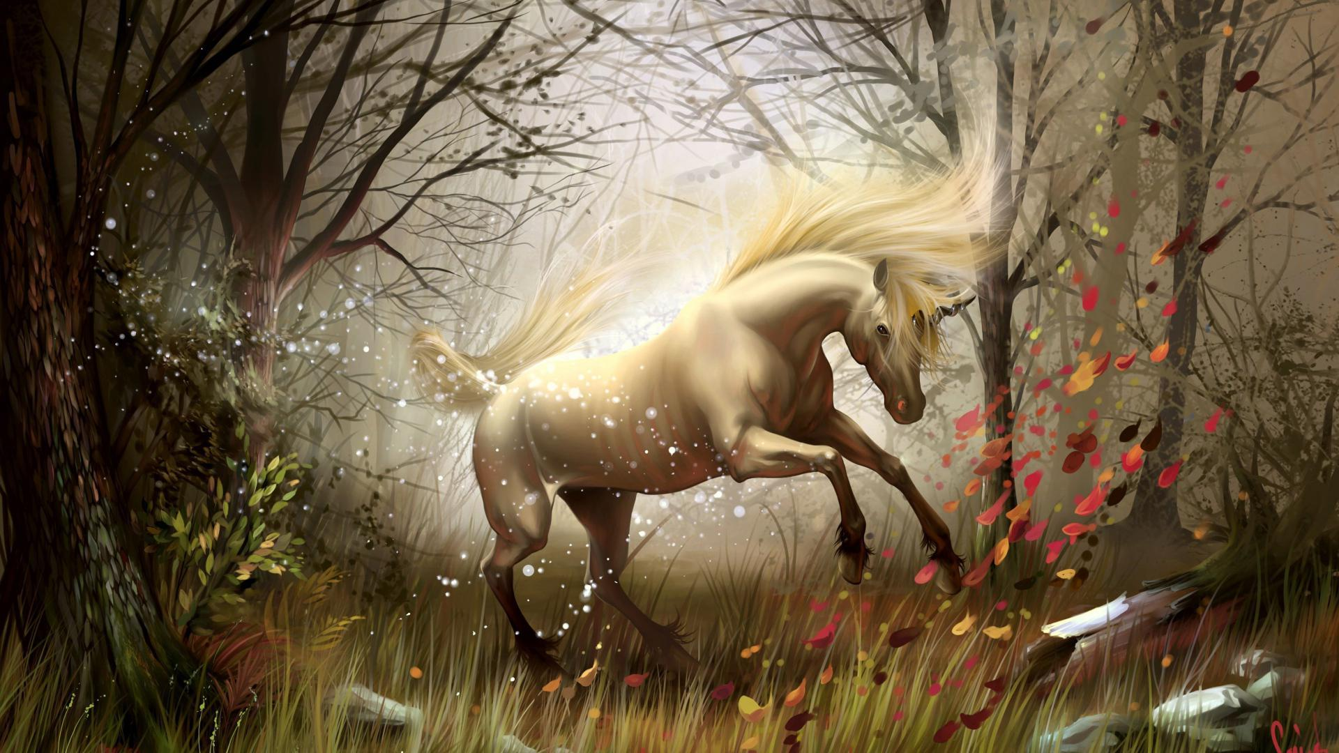 unicorn wallpapers full hd - photo #28