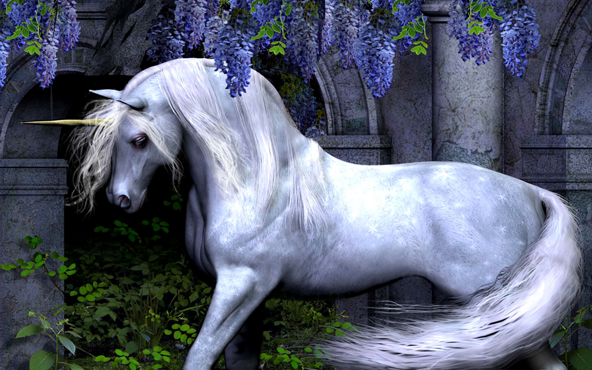 Unicorn wallpaper high definition high quality widescreen wallpaper unicorn voltagebd Images